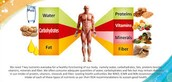 How do you find how much nutrients your body has ?