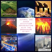 Natural/Human Activities Contributing to the Greenhouse Effect