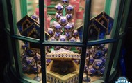 Chocolate Frogs are the most popular candy in the Wizarding World!