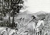 Natives Of North America