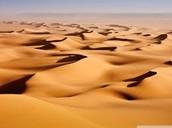 Sand Dune surfing