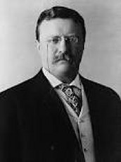 How long was theodore roosevelt governor of new york
