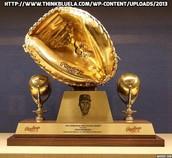 Catcher Gold Glove