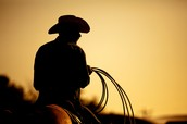 Cowboy: Jack