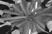 41 South Volleyball Club TEAM EXPECTATIONS
