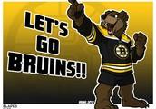 Come watch a Boston vs Maple leafs game