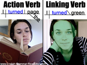 Difference between link and action verbs