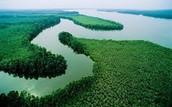 Niger river birds eye view