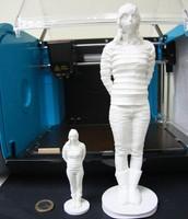 Escaneig i impresió 3D