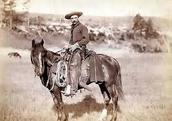 Cowboy/Renegade