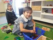Sorting Things in Kindergarten!