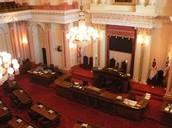 Senate court