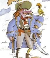 ropa de pirata