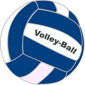 Our 2nd Annual Men's Volleyball Tournament is a month away!!!