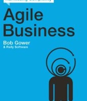Agile Business: A Leader's Guide to Harnessing Complexity