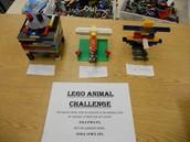 OCT-Lego Challenges