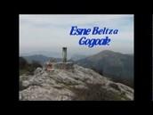 GOGOAK ABESTIA