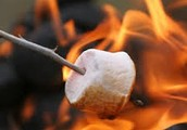 "Got ""Smore"" questions?"
