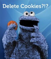 What are Cookies and Why Might I Have to Delete Them?