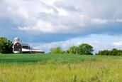 Origional Farmland