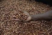 Freshly ground peanuts!