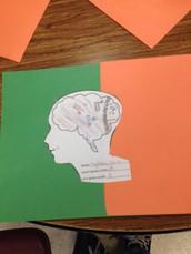 My brain..