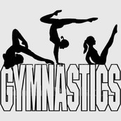 I REALLY LIKE GYMNASTICS