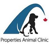 All About Calgary Vet Clinic