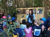 Learning about Tigers from our Zoo docent :)