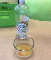 Solution 1: Vinegar