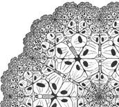 השתלמות מקוונת: למידה בדרך החקר למורים במגמות האמנות החזותית