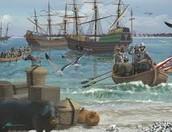 Landing in Florida in 1539