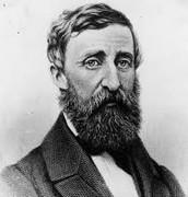 Henry D Thoreau