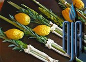 Order a lulav and etrog set and support AJA's IDF Zikit unit!