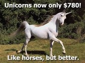 Oldest Unicorn In Store