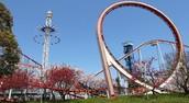 Theme/Amusement Park