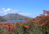 Landforms of New Caledonia