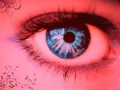 Krysta's eyes