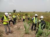 Rehabilitating Lands