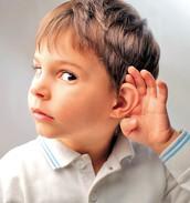 2. La audición