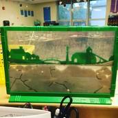 Our Ant Farm!