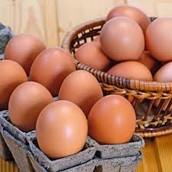 Eggs .