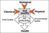 cross unit/ecology/evolution/human