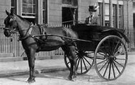 Traveling by Horse Carriage