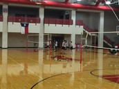 Stallion Volleyball