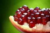 Come Pick Out Your Own Pomegranates!