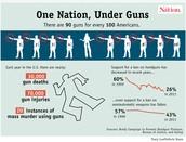 One Nation, Under Guns