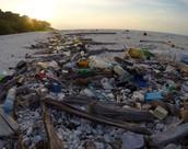 South Sentinel Island Pollution