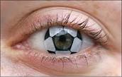 Soccer Fan?