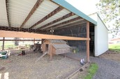 Deluxe Chicken Coop and Storage Area - or More Stall Space